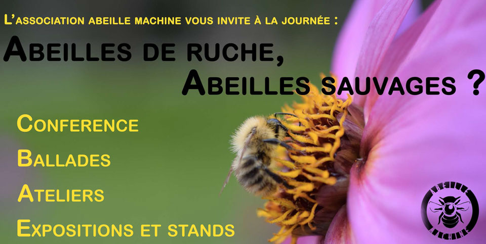 conference-abeilles-color